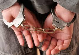 دستگیری ۸ شکارچی متخلف در شهرستان فسا
